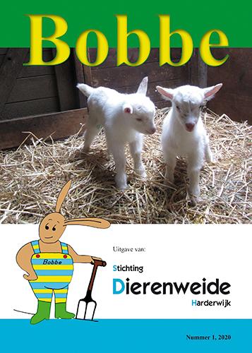 sd-harderwijk-2020-04